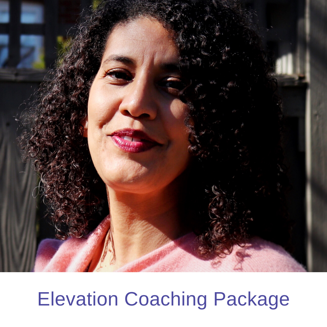 Elevation Coaching Package
